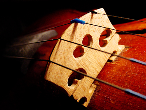 Violin_bridge hl